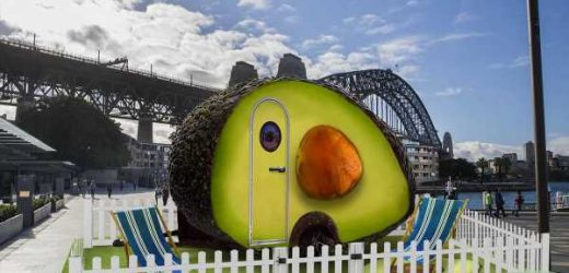 "You Can Stay in This Australian ""Avo-Condo"" for Just $70 a Night"