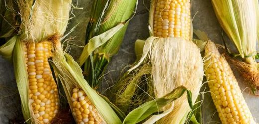 Sweet Corn: The Best Ways to Pick It, Shuck It, Cook It, and Eat It