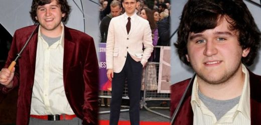 Harry Melling:Harry Potter 'Dudley Dursley' actor unrecognisable after dropping 4st 5lb