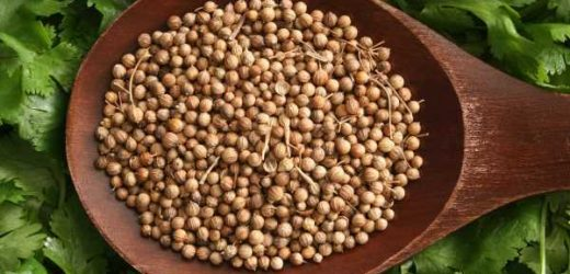 Coriander Substitute: What Can You Use Instead?
