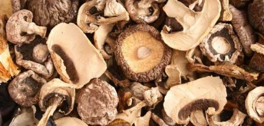 Dried Mushrooms Are Worth Every Penny—Here's How to Use Them
