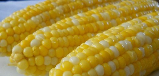 Jamie's Sweet and Easy Corn on the Cob