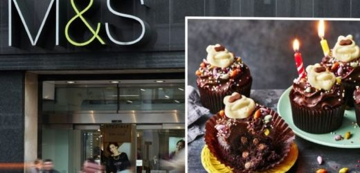 Marks and Spencer shoppers go wild for brand new Colin the Caterpillar cupcakes