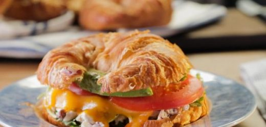 Chicken Salad, Avocado and Cheddar Panini